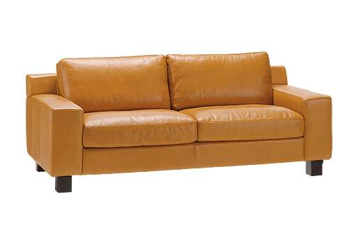 DIMANCHE SOFA (3) Leather