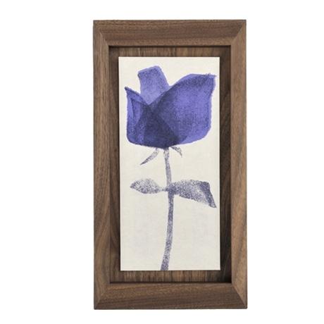 【写真】mocchi mocchi 「青い花  �T」