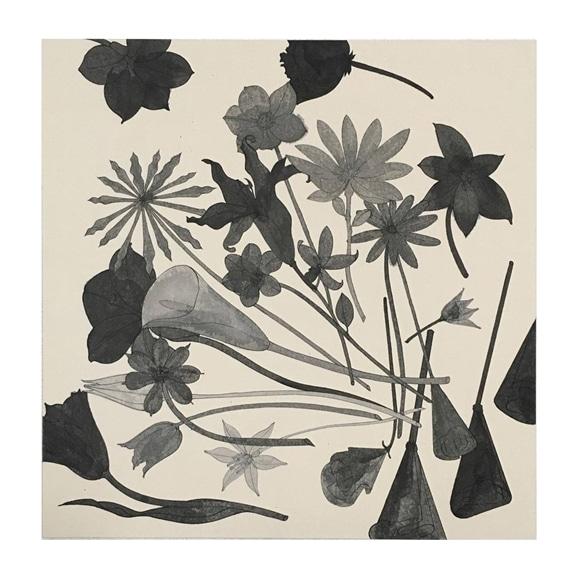 【写真】【一点物】有瀬龍介 「paper flowers」