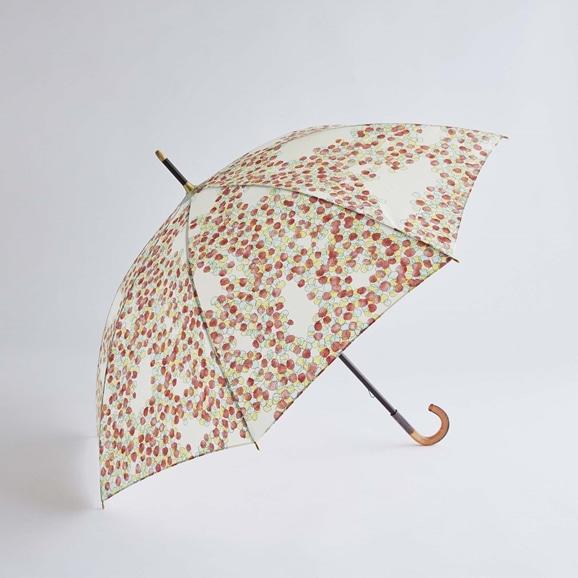 【写真】イイダ傘店 晴雨兼用傘 こもれび 紅葉 55cm