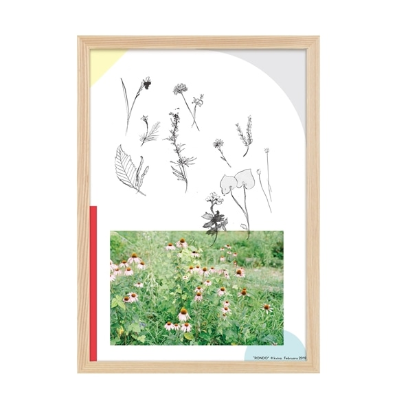 【写真】【定番品】kvina 「庭、小鳥」
