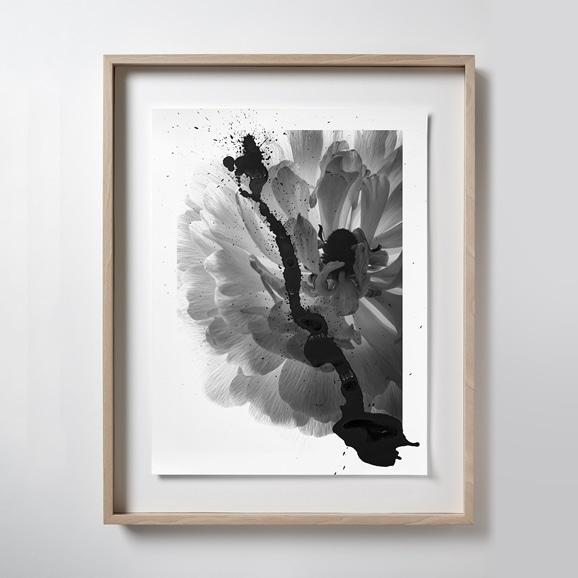 【写真】【一点物】安田奈緒子×林雅之 LLサイズ「Over Lap 013 Anemone」