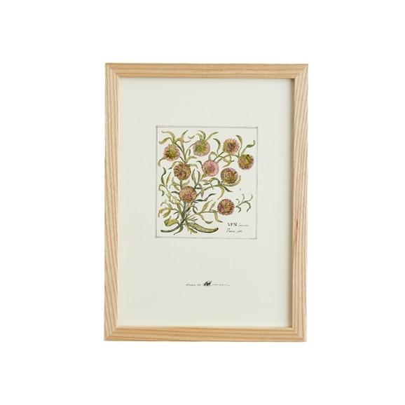 【写真】【一点物】coricci 「botanical 006」