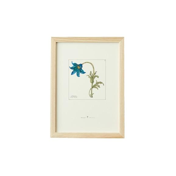 【写真】【一点物】coricci 「botanical 014」