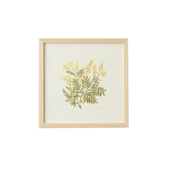 【写真】【一点物】coricci 「botanical 017」