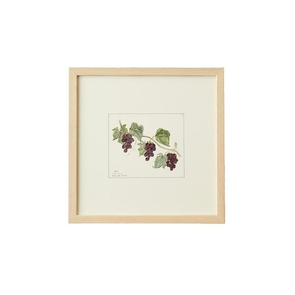 【写真】【一点物】coricci 「botanical 020」