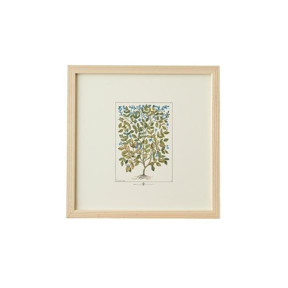 【写真】【一点物】coricci 「botanical 022」