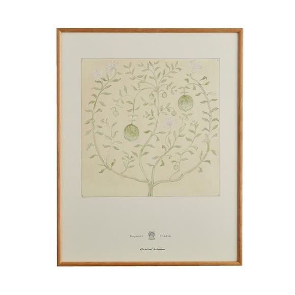 【写真】【定番品】coricci 「botanical ベルガモットの揺かご」