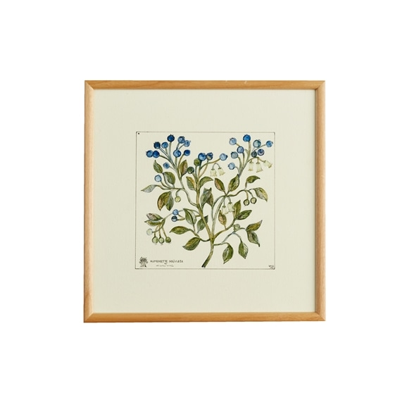 【写真】【定番品】coricci 「botanical ノワ」