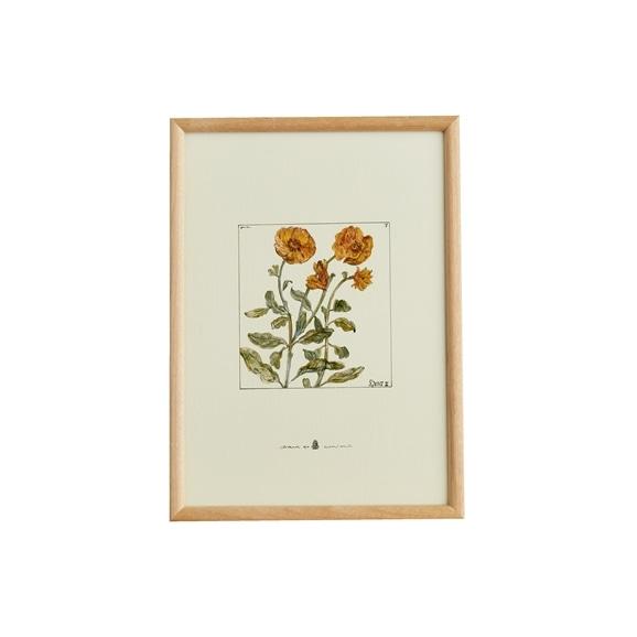 【写真】【定番品】coricci 「botanical フィオーレ」