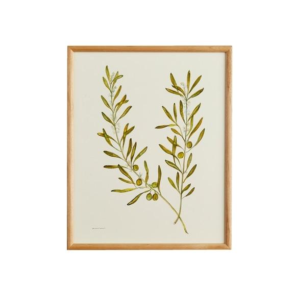 【写真】【一点物】coricci 「botanical 043」