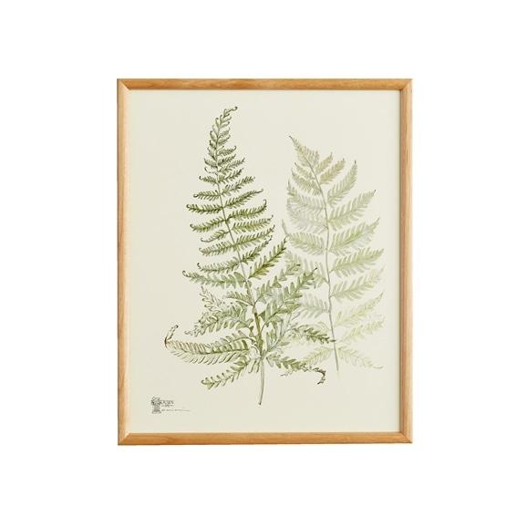 【写真】【一点物】coricci 「botanical 044」