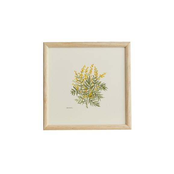 【写真】【一点物】coricci 「botanical 038」