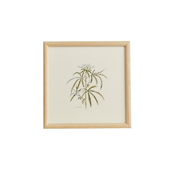 【写真】【一点物】coricci 「botanical 039」