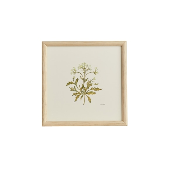 【写真】【一点物】coricci 「botanical 041」