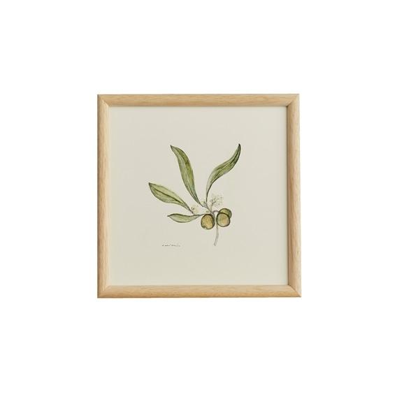 【写真】【一点物】coricci 「botanical 042」
