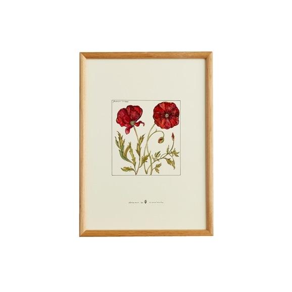 【写真】【一点物】coricci 「botanical 032」