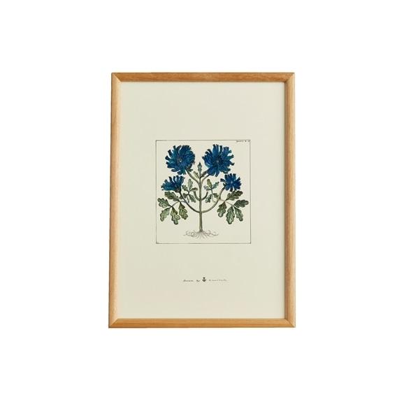 【写真】【一点物】coricci 「botanical 033」