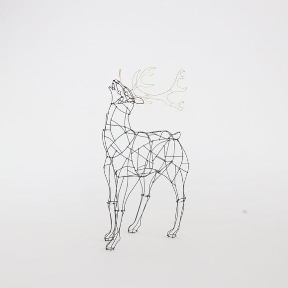 【写真】【一点物】山田一成 「星に願う鹿 B」