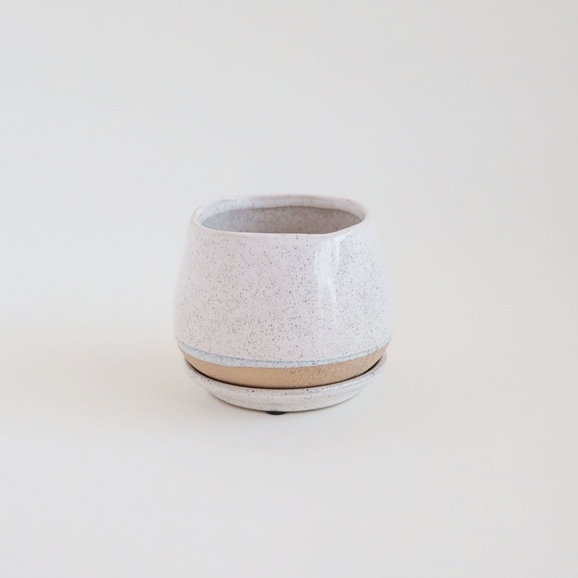 【写真】鉢 ポリーヌ φ11cm ホワイト