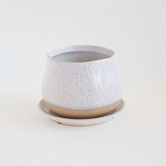 【写真】鉢 ポリーヌ φ16cm ホワイト