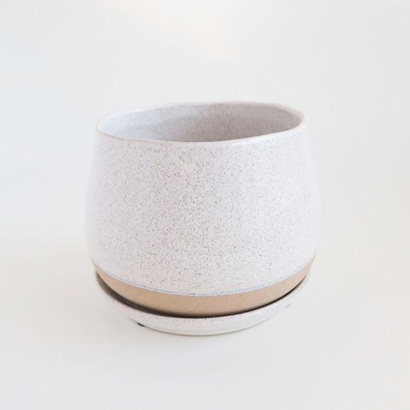 【写真】鉢 ポリーヌ φ18cm ホワイト