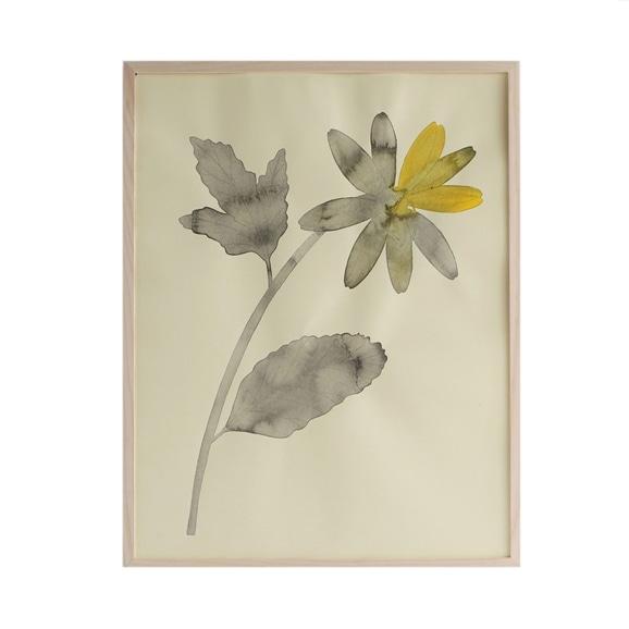 【写真】【一点物】有瀬龍介 「Flower 2」#THEME ART