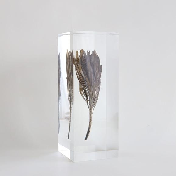 【写真】【一点物】外山翔 「Acrylic dryflower big 05」