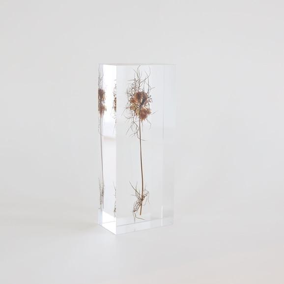 【写真】【一点物】外山翔 「Acrylic dryflower 05」
