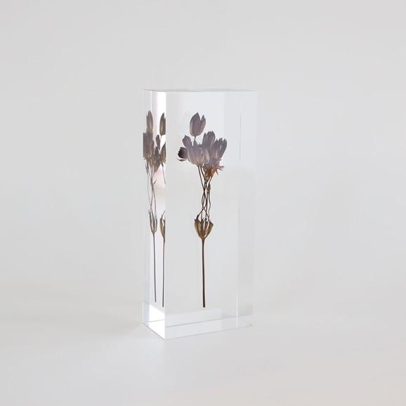 【写真】【一点物】外山翔 「Acrylic dryflower 06」