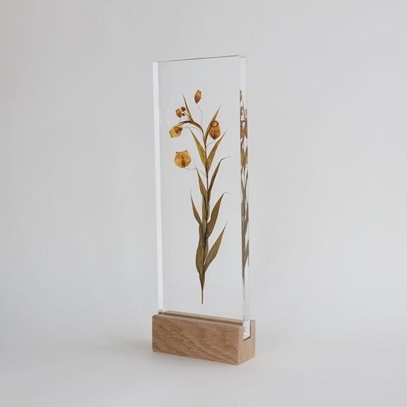 【写真】【一点物】外山翔 「Acrylic pressdryflower 01」