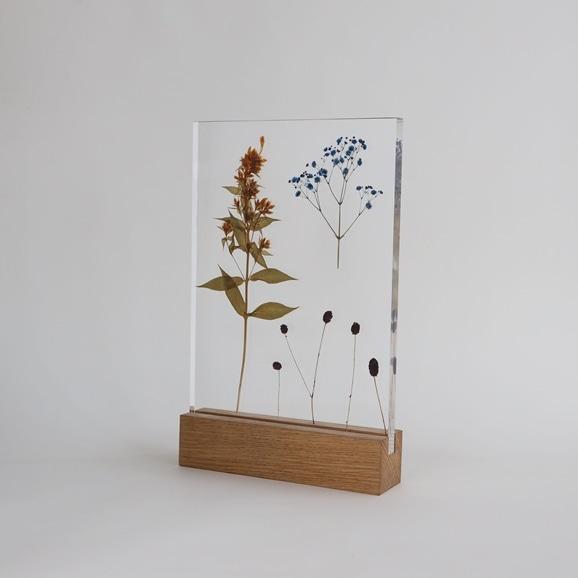 【写真】【一点物】外山翔 「Acrylic pressdryflower 03」