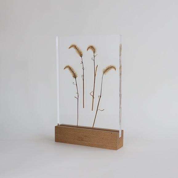 【写真】【一点物】外山翔 「Acrylic pressdryflower 04」