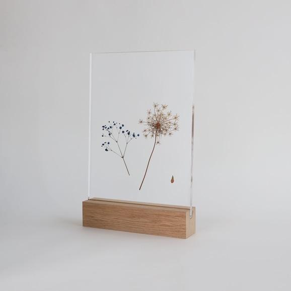 【写真】【一点物】外山翔 「Acrylic pressdryflower 05」