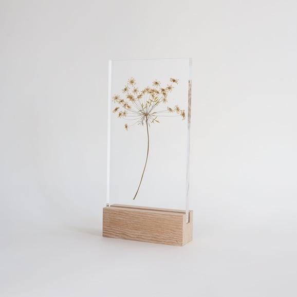 【写真】【一点物】外山翔 「Acrylic pressdryflower 08」