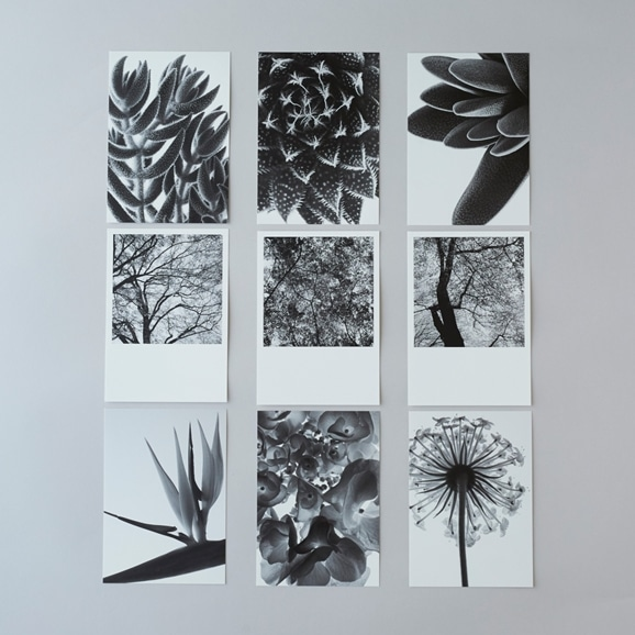 【写真】林雅之 BLACK AND WHITE ポストカードセット