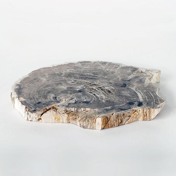 【写真】【一点物】インドネシア 珪化木のプレート