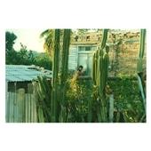 橋本裕貴 「Cuba #06」
