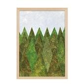【定番品】秋山花 「FOREST」