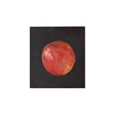 【一点物】舞木和哉 「リンゴ」