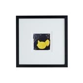 【定番品】ドナルド・サルタン 「Four lemons」