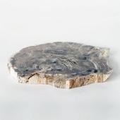 【一点物】インドネシア 珪化木のプレート