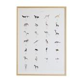 【定番品】ドゥローム・カオリ 「Alphabet Art Print」