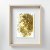 林雅之 「LF051 Hydrangea アジサイ」